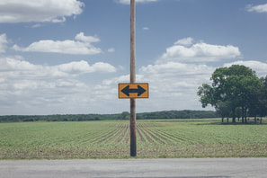 Field landscape with an arrow sign in foreground pointing in two directions
